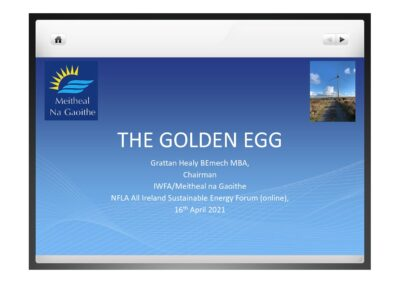The Golden Egg: How to power Ireland's renewable energy generation and the challenges it faces