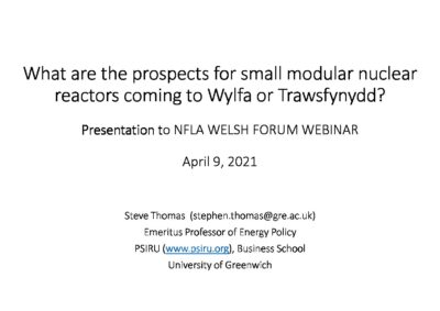 What are the prospects for small modular nuclear reactors coming to Wylfa or Trawsfynydd?