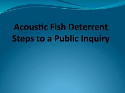 Issues of concern if EDF do not construct acoustic fish deterrents at Hinkley Point