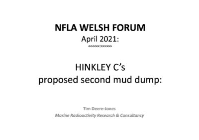 Hinkley Point C's proposed second mud dump